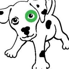 Spot-ified, LLC