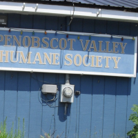 Penobscot Valley Humane Society