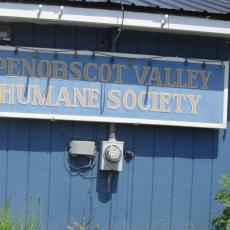 Penobscot Valley Humane Society