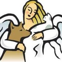 Angels For Animals