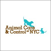 Animal Care & Control of NYC