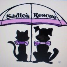 Sadie's Rescue