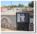Snedigar Sportsplex Dog Park in Chandler, AZ