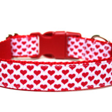 Valentines Day Dog Collar