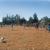 Deer Creek Village Dog Park Petaluma, CA