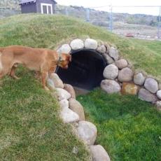 La Plata County Humane Society Dog Park Durango, CO