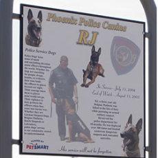 RJ Dog Park at Pecos Park Phoenix, AZ