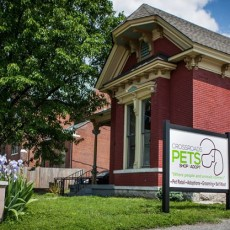 Crossroads Pets- Shop & Adopt Nashville TN Independent Pet Store