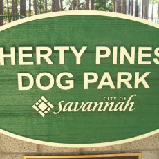 Herty Pines Dog Park Savannah GA