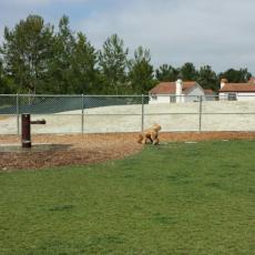 La Paws Dog Park Mission Viejo California dog park