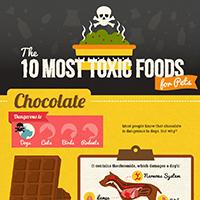 Pet Toxic Foods
