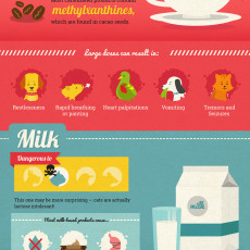 Caffeine and Milk Toxic Food for Pets