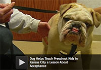 Dog Helps Teach Kids in Kansas City a Lesson About Acceptance