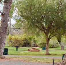 Baldwin Dog Park in Concord California