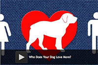 Who Does Your Dog Love More?