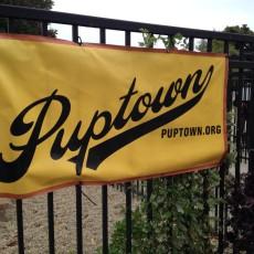 Puptown Dog Park Chicago IL