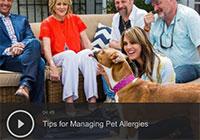 Tips for Managing Pet Allergies