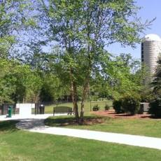 Town Creek Park Dog Park in Auburn, AL