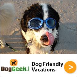 The Bow Wow Bungalow Dog Friendly Beach House in Cape San Blas, FL