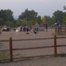 The O-SO Fun Dog Park in Gillette Wyoming