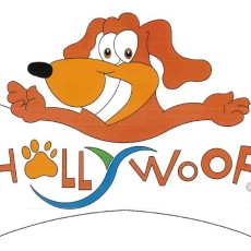 Hollywoof Dog Park in Hollywood Florida