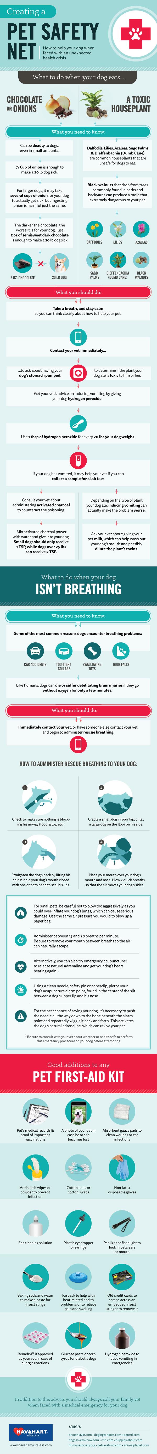 Pet Safety Net