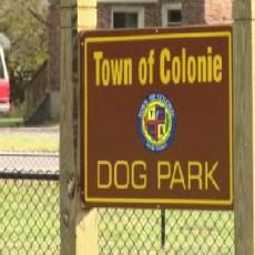 Colonie Dog Park in Colonie New York