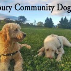 Salisbury Community Dog Park in Lakeville CT