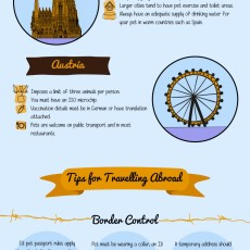 a complete guide to pet travel