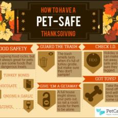 Pet Safe Thanksgiving