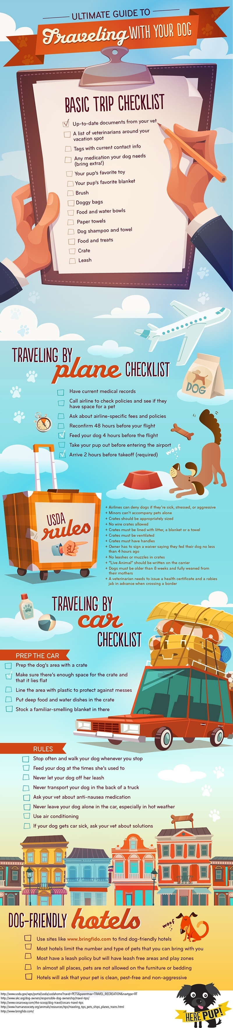 Dog Travel Infographic