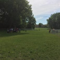 Community Dog Park in Albert Lea, Minnesota