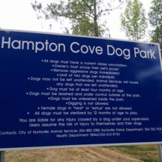 Hampton Cove Dog Park in Huntsville, AL
