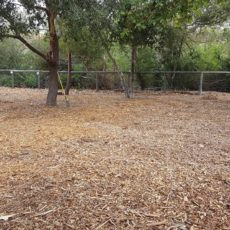 El Chorro Dog Park in San Luis Obispo, CA