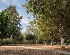 El Chorro Dog Park in San Luis Obispo CA