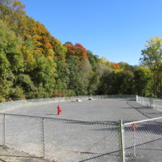 Heyworth Mason Park Dog Park in Peru NY