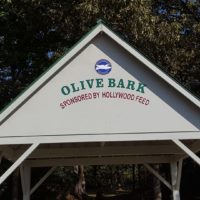 Olive Bark