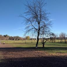 Eau Claire Dog Park
