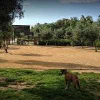 Montevalle Park Dog Park
