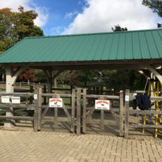 Bark Park of Ridgefield
