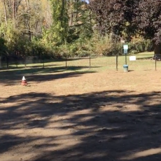 Bethel Bark Park