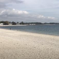 Compo Dog Beach