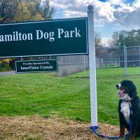 Hamilton Dog Park