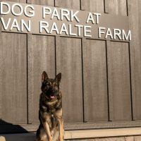 Dog Park at Van Raalte