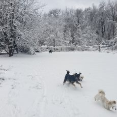 Playgroup_Snow4